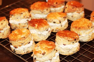 Brendan's Barberry & Pecan Scone